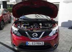 Nissan Qashqai 2014 г.в. фото
